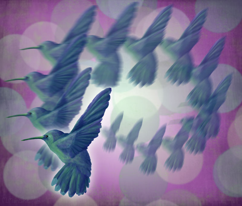 hummingbird_digital-painting2_small