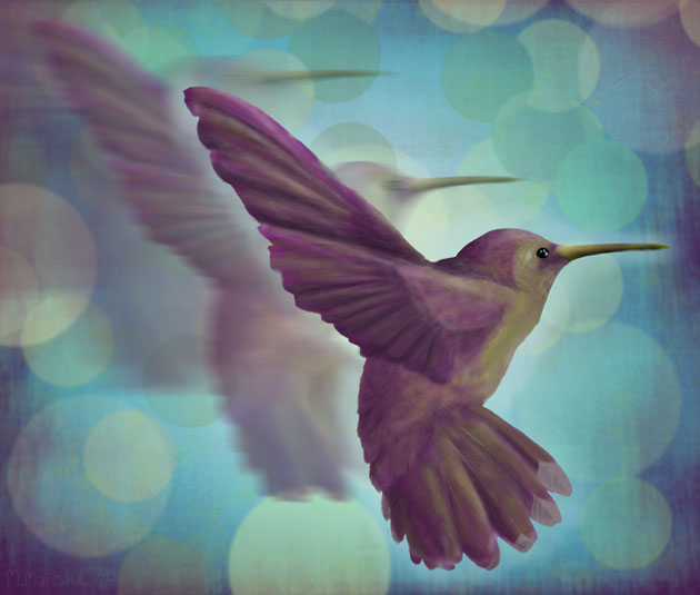 hummingbird_digital-painting-small