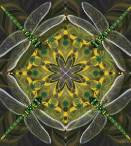 Dragonfly Mandala
